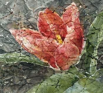 Gail Bracegirdle Tulip